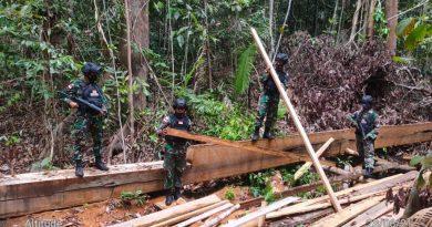 Lagi…Satgas Pamtas Yonarhanud 16/SBC Amankan Kayu Ilegal Saat Patroli Patok Batas